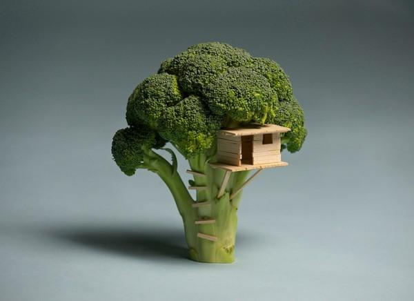 Toothpick Treehouse in a Broccoli Tree
